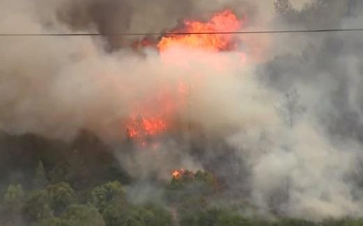 Cháy rừng Pawnee Fire  Bắc California lan rộng hơn 3,000 mẫu đất