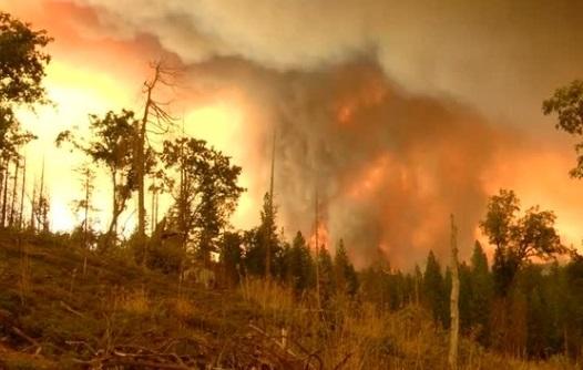 Thêm 2 lính cứu hỏa bị thương trong vụ cháy rừng ở Yosemite