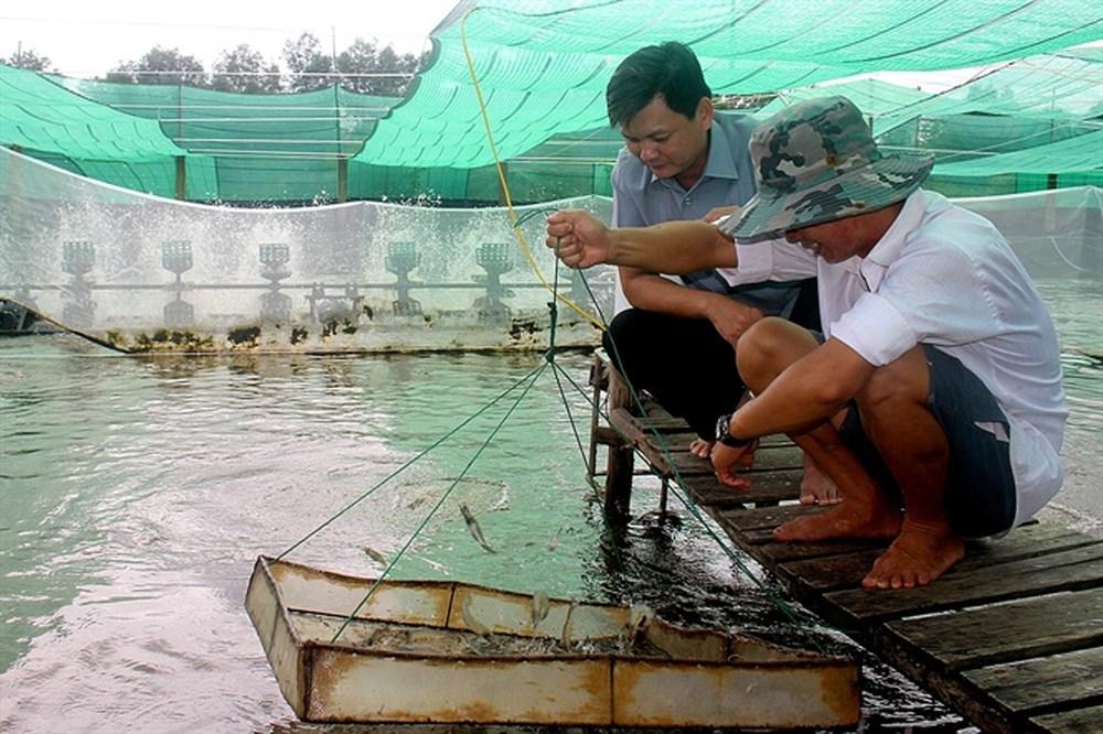 Thêm một kỹ sư nuôi tôm ở Bến Tre bị bắt vì 'tuyên truyền chống nhà nước'