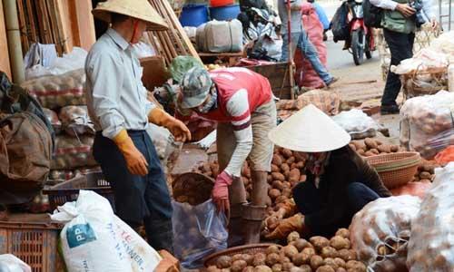 Chính quyền CSVN không có luật phạt hàng nông sản Trung Cộng giả hàng Việt