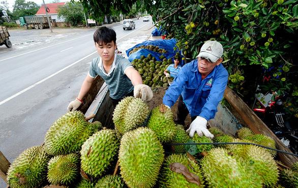 Trung Cộng siết chặt hàng nông sản Việt Nam