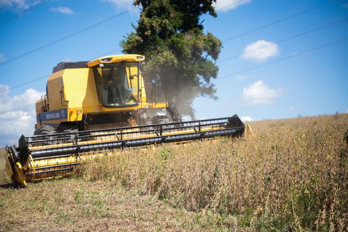 Trung Cộng đề nghị mua thêm 30 tỷ Mỹ kim nông sản của Hoa Kỳ mỗi năm