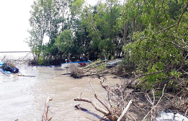 Mỗi năm Đồng bằng sông Cửu Long mất 300 đến 500 ha đất vì sạt lở