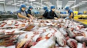 Mỹ áp thuế chống bán phá giá đối với cá tra Việt Nam