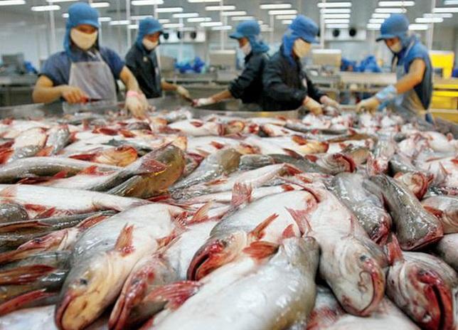 EU từ chối nhập cảng 17 lô hàng của Việt Nam do không an toàn vệ sinh thực phẩm