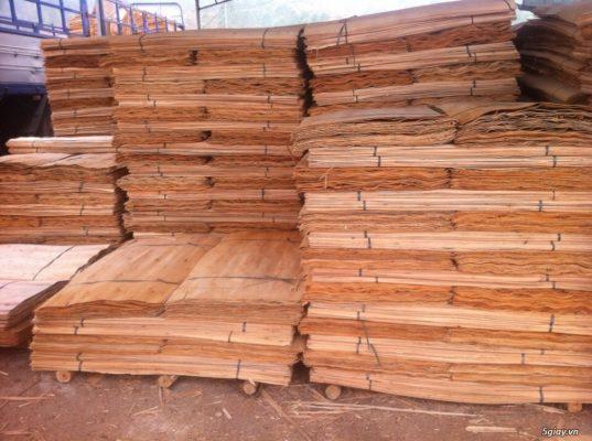 Nhiều công ty gỗ Việt Nam bắt tay với Trung Cộng để lừa Mỹ