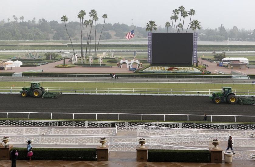 Thêm 2 con ngựa tử vong tại trường đua Santa Anita vào cuối tuần