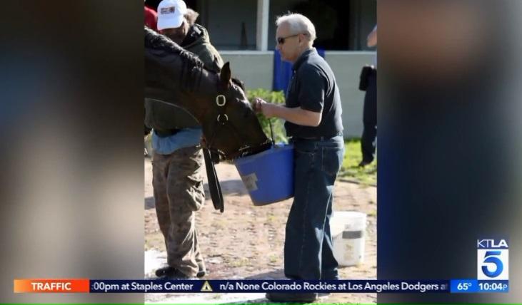Con ngựa thứ 30 tử vong tại trường đua Santa Anita