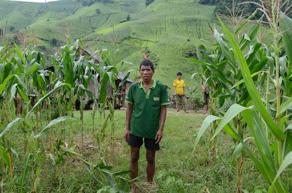 Trẻ em chết, dị tật bẩm sinh do nông dân Sơn La lạm dụng thuốc trừ cỏ
