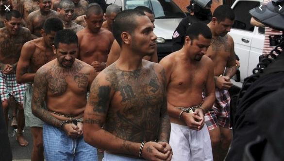 22 thành viên băng đảng MS-13 bị truy tố trong hàng loạt vụ giết người tại Nam California