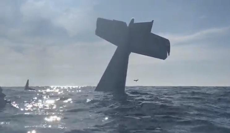 Máy bay rớt xuống bãi biển Half Moon Bay