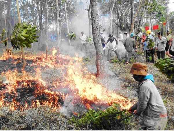 Trung bình mỗi ngày Việt Nam có 9 vụ cháy