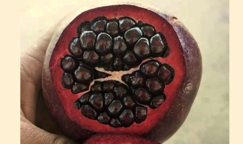 Phụ nữ Hà Nội săn lùng trái lựu Trung Cộng về ăn cho sắc đẹp