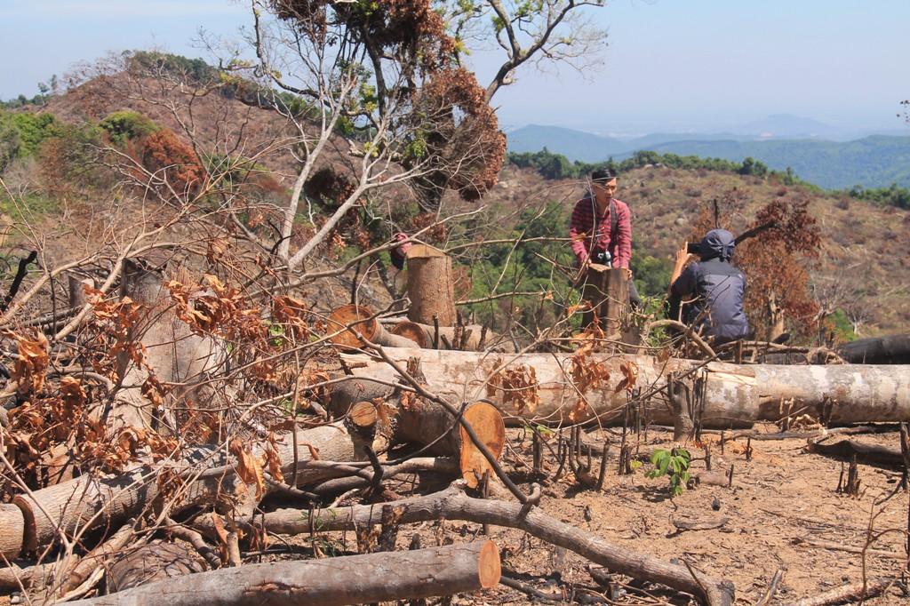 Phá rừng, chủ tịch tỉnh Dak Nong chỉ bị khiển trách