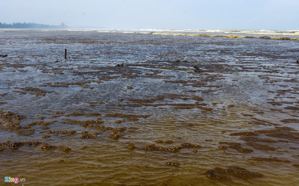 Nước biển gần khu kinh tế Dung Quất đổi màu đen như cà phê