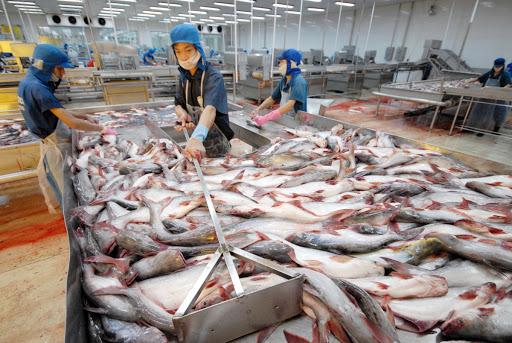 Xuất cảng thủy sản của Việt Nam chịu ảnh hưởng nặng nề bởi dịch coronavirus