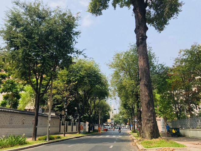 Hà Nội và Sài Gòn hết ô nhiễm không khí vì dịch coronavirus