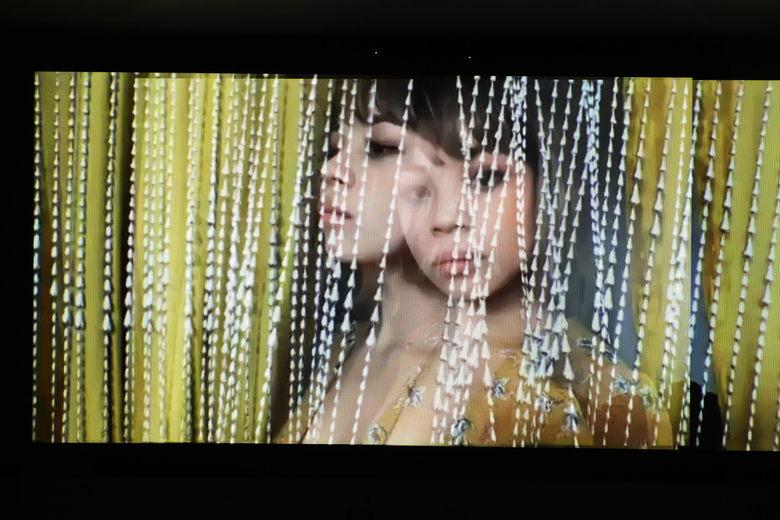 Nhiếp ảnh gia gốc Việt chụp ảnh qua cuộc gọi video