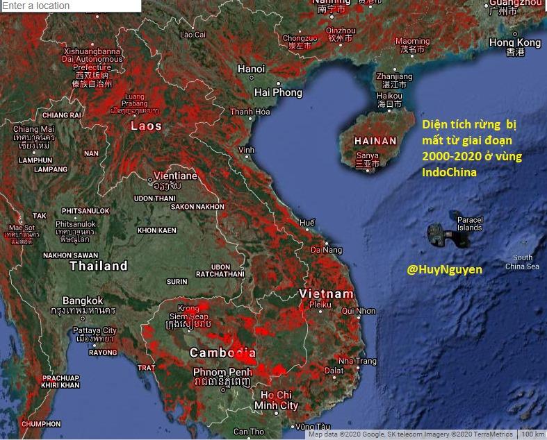 20 năm qua Việt Nam mất rất nhiều diện tích rừng