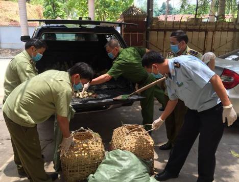 CSVN khẩn cấp chặn gia cầm nhập lậu từ Trung Cộng