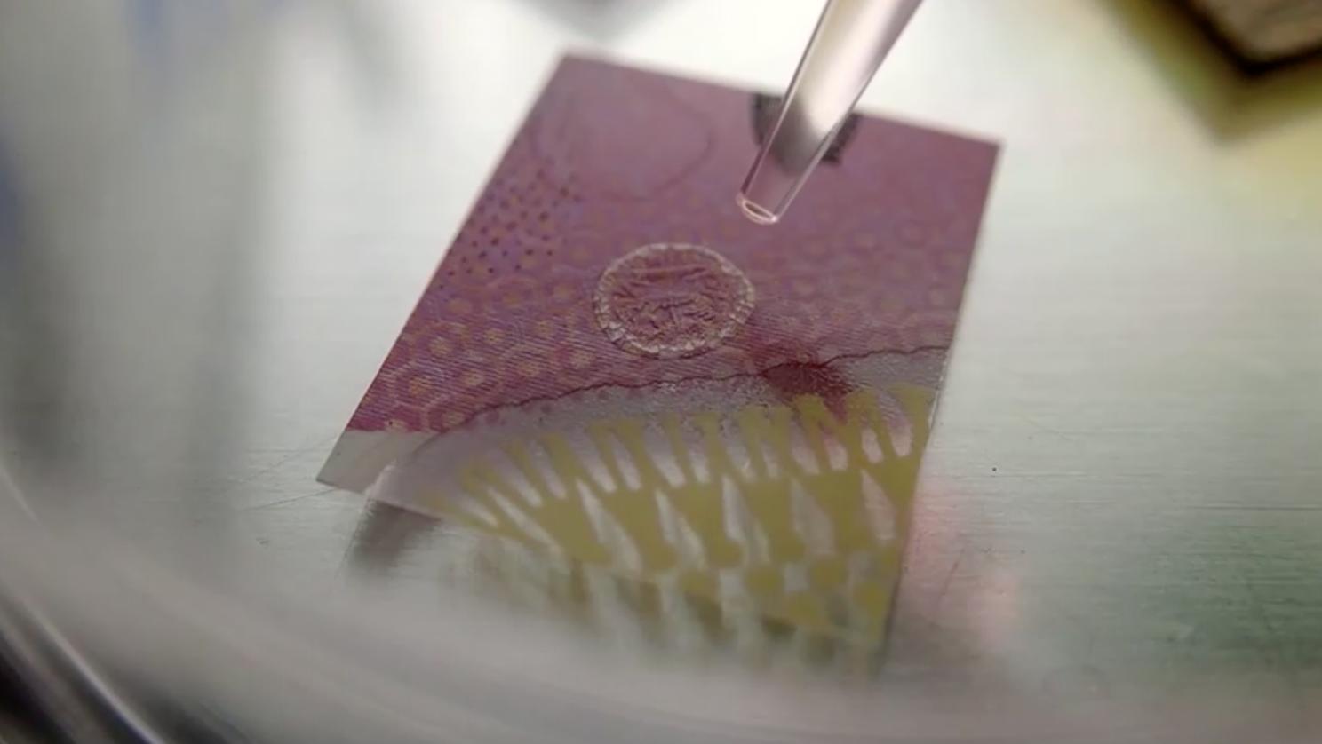 Nghiên cứu cho thấy coronavirus có thể tồn tại 28 ngày trên thủy tinh, tiền giấy