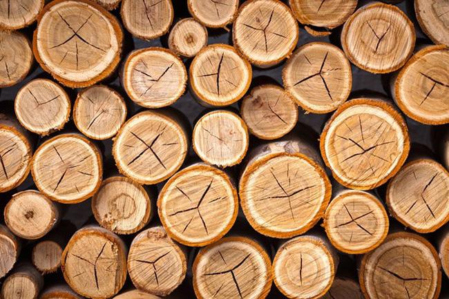 CSVN thắt chặt luật gỗ để giảm bớt mối đe dọa thuế của Hoa Kỳ