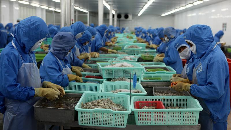 Hoa Kỳ trở thành quốc gia mua nhiều nông sản của Việt Nam nhất