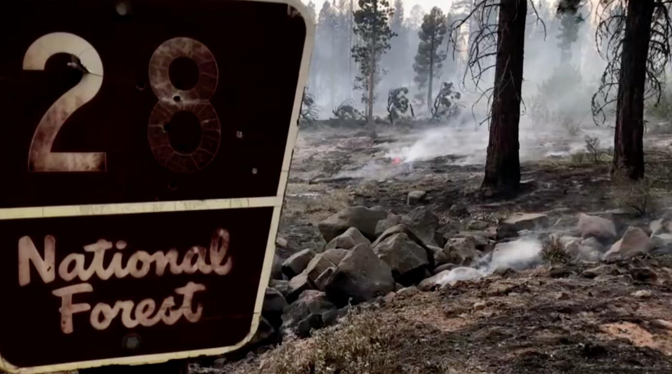 Cháy rừng hoành hành khắp miền Tây Hoa Kỳ và Canada